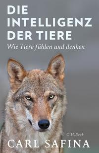 Carl Safina - Die Intelligenz der Tiere. Rezension von Eckart Löhr